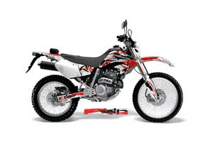 Honda XR250 SM Dirt Bike Graphic Kit - 2003-2005 Expo Red