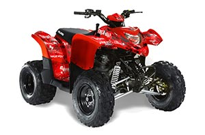 Polaris Phoenix 200 ATV Graphic Kit - 2005-2016 Stars n Stripes Red
